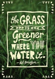 the-grass-is-greener-436x620